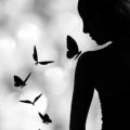 Papillon d'Obsidienne